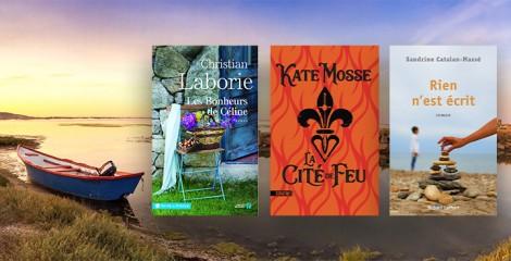 La France comme vous ne l'avez jamais lue : la belle Occitanie en 12 livres