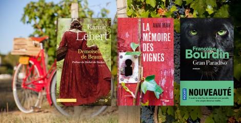 La France comme vous ne l'avez jamais lue : la Bourgogne se dévoile en 7 livres