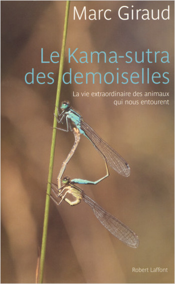 The Dragonflies' Kama Sutra