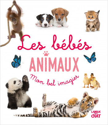 Mon bel imagier photo - Les bébés animaux - Tout-carton éveil - Dès 6 mois