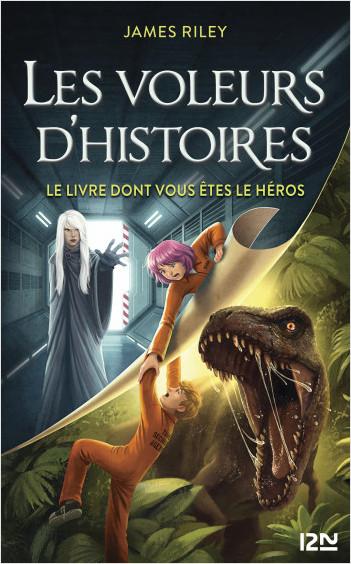 Les Voleurs d'histoires - Tome 4 : Le livre dont vous êtes le héros